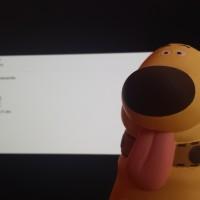 Email e cane di gomma